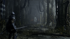 Survive your first few hours in Demon's Souls with this gameplay guide