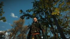 The Witcher: Centuries-Old Trees in Poland Now Named After Characters in the Franchise